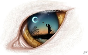 Картинка небо, ночь, луна, арт, кошачий глаз, самолетик
