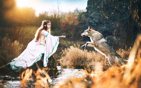 Картинка волк, эльфийка, Wolf with elves princess