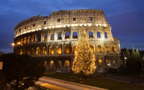 Обои колизей, елка, Рим