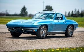 Картинка Corvette, Chevrolet, Ретро, Голубой, Автомобиль, Coupe, 1966, Sport, L30, StingRay