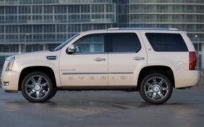 Картинка Cadillac, внедорожник, Escalade, Hybrid