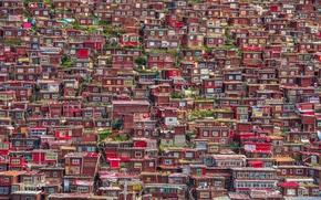 Обои город, Китай, домики, провинции Сычуань, Гардзе-Тибетский автономный округ, Larung Gar