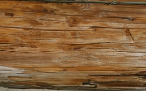 Обои wall, veins, wooden
