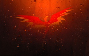 Картинка капли, птица, царапины