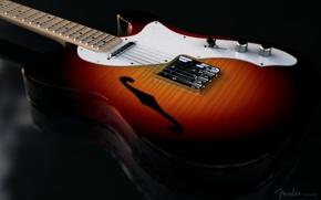 Картинка гитара, телекастер