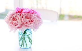 Картинка белый, цветы, стол, фон, стул, банка, ваза, розовые, голубая, пионы, баночка