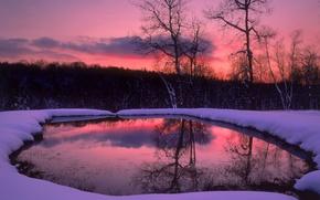 Обои озеро, вечер, снег, зима, деревья, лес