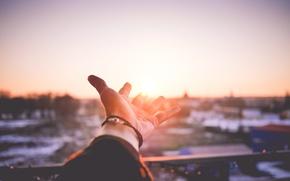 Обои солнце, ладонь, рука, закат