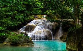Картинка лес, деревья, озеро, водопад