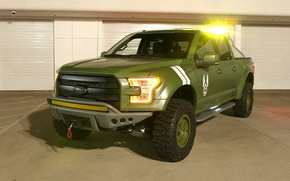 Картинка Green, Special Edition, Ford F-150, Halo Sandcat