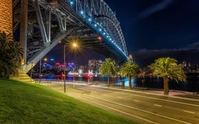 Картинка дорога, ночь, мост, огни, река, пальмы, сидней, австралия