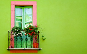 Картинка цветы, стена, двери, балкон, салатовая