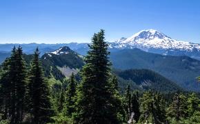 Картинка лес, солнце, деревья, горы, Аляска, США, Alaska