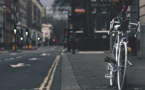 Обои street, flowers, bike