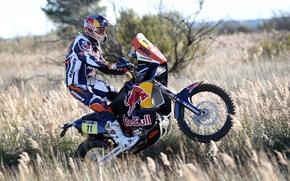 Картинка Спорт, Гонка, Мотоцикл, Гонщик, Мото, Red Bull, Rally, Dakar, Вид сбоку