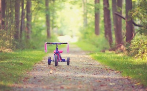 Картинка листья, деревья, велосипед, детство, фон, дерево, розовый, widescreen, обои, настроения, детский, wallpaper, листочки, bicycle, тропинка, …