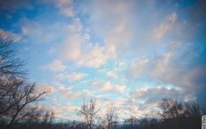 Картинка небо, облака, деревья, sky, trees, clouds, Калуга, Kaluga, Ilya Klad, Илья Кладь