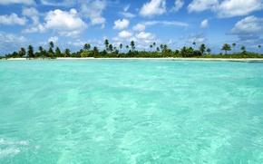 Обои море, пальмы, пейзажи, песок