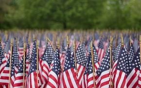 Картинка макро, флаги, Memorial Day