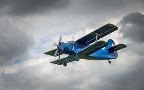 Обои Antonov, небо, An-2, самолёт