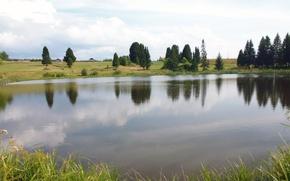 Картинка поле, небо, вода, природа, пруд, деревня