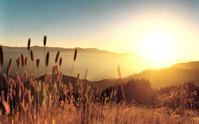 Картинка трава, холмы, Закат