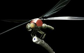 Картинка робот, стрекоза, dragonfly