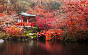 Картинка осень, лес, мост, река, Япония, храм, Japan, forest, Kyoto, river, bridge, autumn, parks, Дайго-дзи