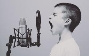 Картинка music, Canada, microphone, boy, scream, mic, vocals, Parry Sound