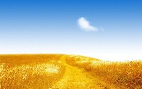 Обои дорога, небо, свет, поле