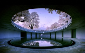 Картинка вода, природа, здание, сакура