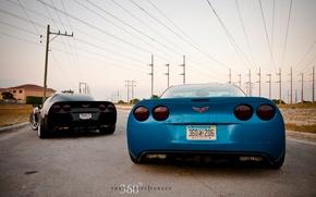 Обои corvette, chevrolet, black, blue