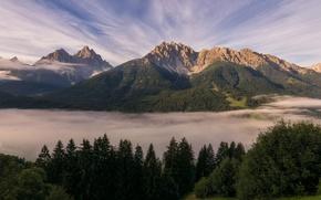 Картинка лес, небо, горы, Альпы, леса
