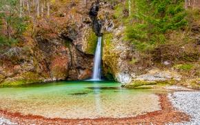 Картинка лес, скала, камни, водопад, мох, Словения, Bohinj, Grmecica waterfall