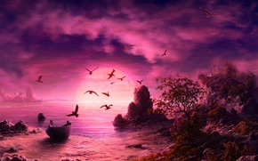 Обои море, закат, чайки