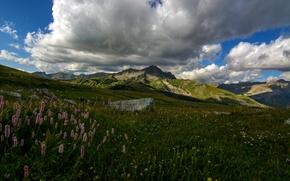 Обои горы, Франция, Colmars, луг, люпин, облака, трава, камни