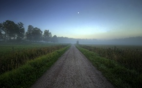 Картинка дорога, поле, лес, лето, туман, рассвет, утро