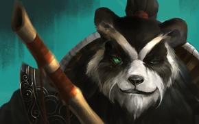 Картинка морда, панда, World of Warcraft, Warcraft, wow, hots, Heroes of the Storm, Chen