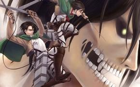 Картинка девушка, оружие, зубы, аниме, арт, парень, титан, levi, shingeki no kyojin, mikasa ackerman, вторжение гигантов, …