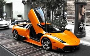 Картинка серость, улица, вверх, Lamborghini, дверка, LP2310оранж