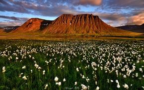 Обои исландия, суганда-фьорд, лето, июль