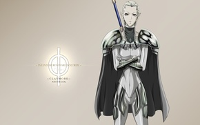 Картинка demon, girl, sword, logo, game, Claymore, armor, woman, anime, ken, asian, armour, warrior, manga, japanese, …
