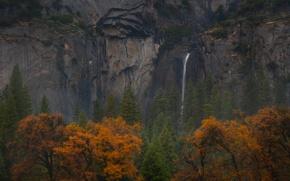 Картинка осень, деревья, горы, скалы, водопад