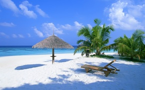 Обои пальмы, багамы, океан, шезлонг, пляж, песок, лето, навес