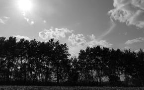 Картинка sky, nature, beautiful, clouds, sun, black and white