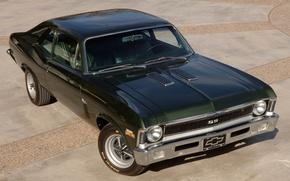 Картинка Chevrolet, Шевроле, зелёный, 1970, передок, Nova, Muscle car, Мускул кар, 396, Нова