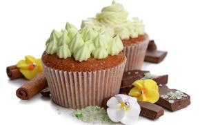 Картинка шоколад, пирожное, крем, десерт, выпечка, chocolate, cream, dessert, кексики, cupcakes