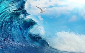 Картинка море, вода, океан, волна, sky, sea, ocean, blue, splash, wave