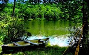 Картинка лес, лето, река, лодка
