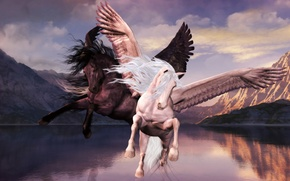 Картинка Pegasus, Greek, fable, methology